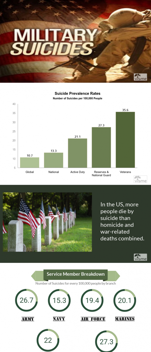 Military Suicides Rates Infographic